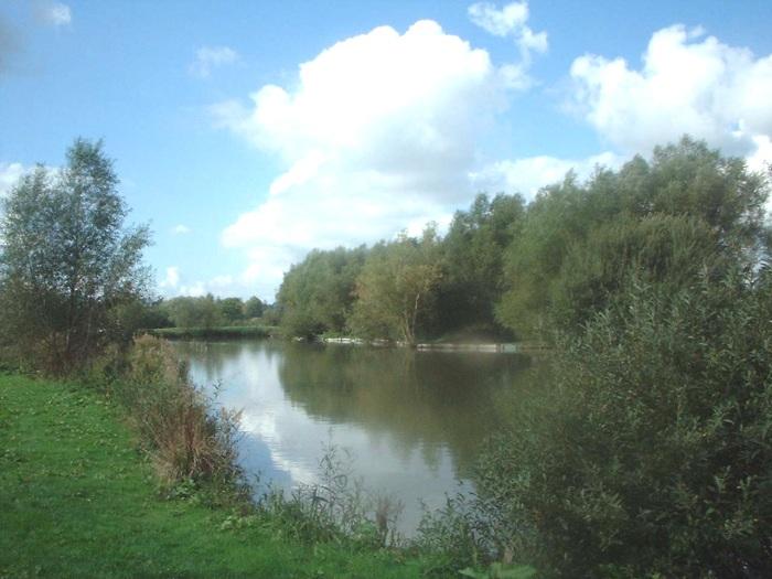dilton-marsh